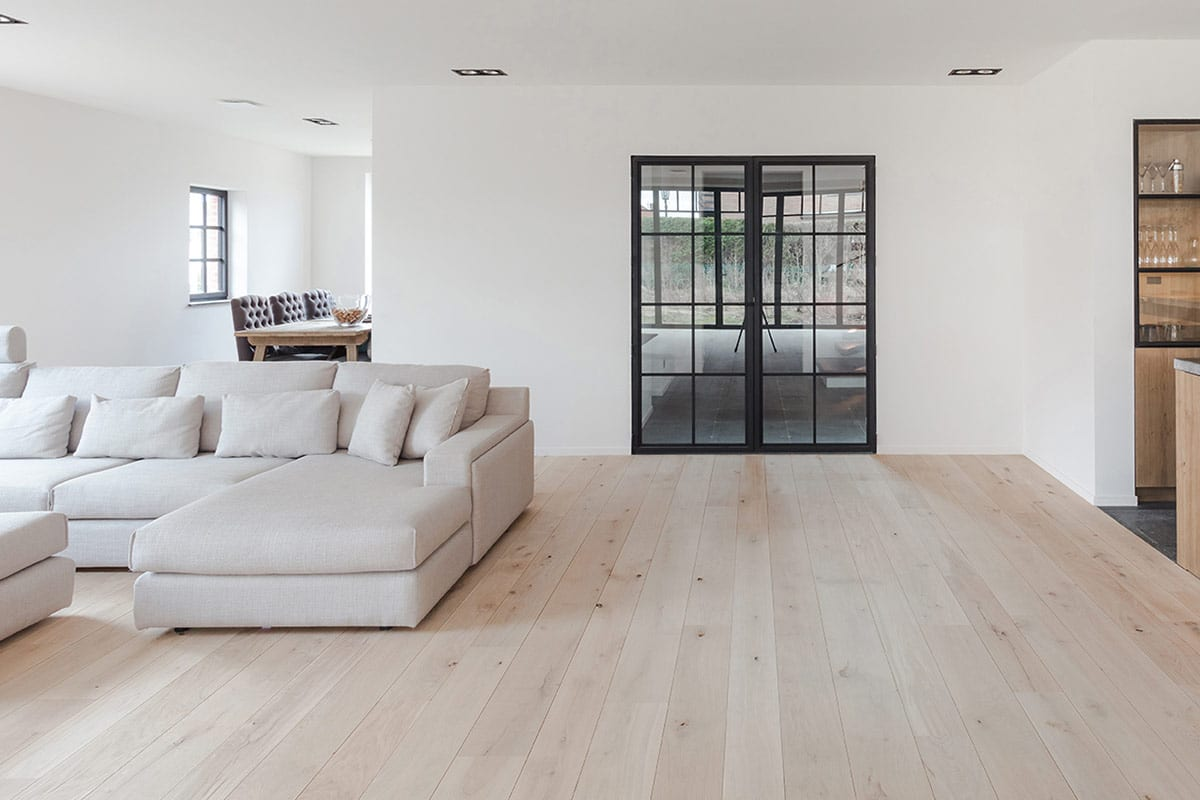 classic crittall-style door in living room