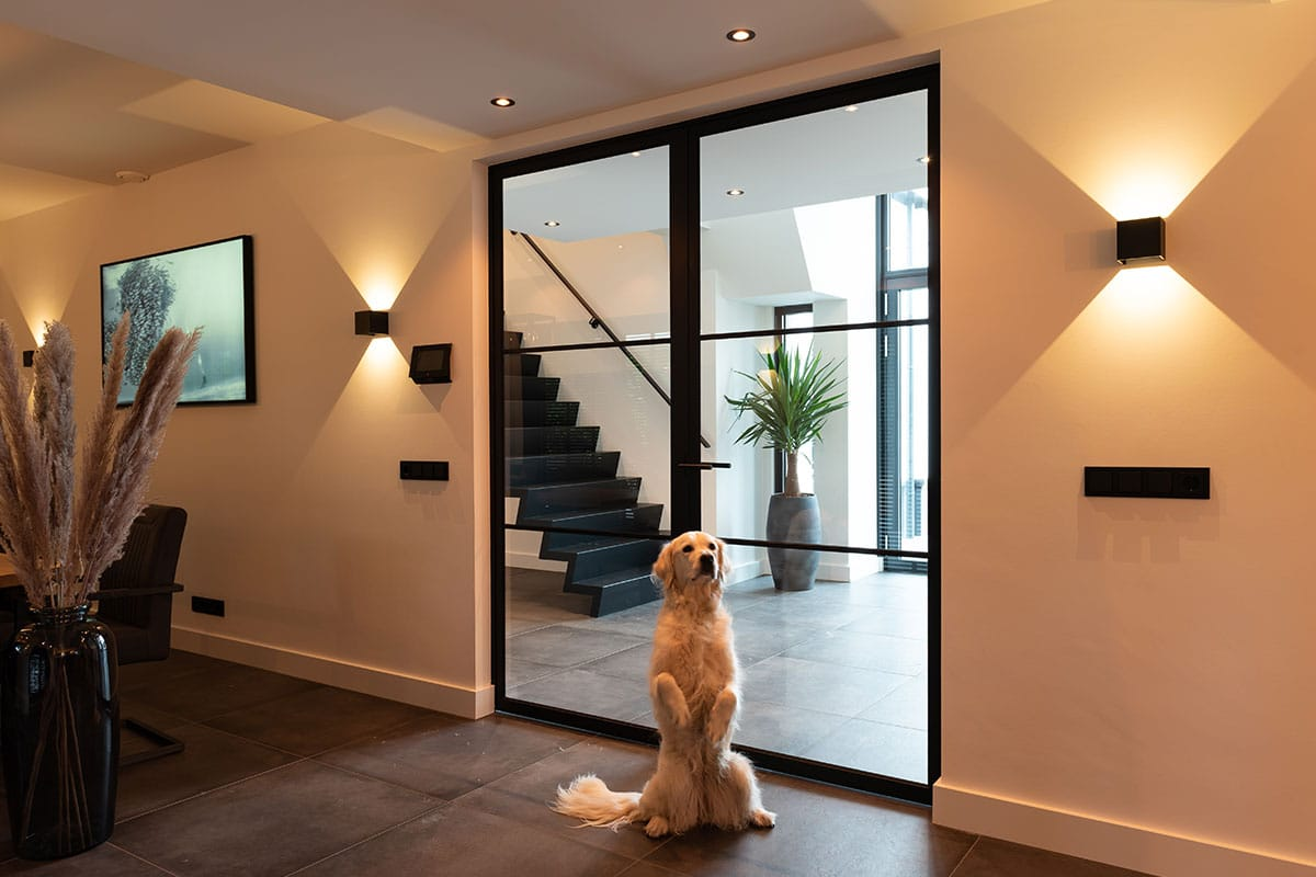 dog and steelit door
